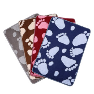 Custom Absorbent Pet Floor Mat Polyester Microfiber Chenille Bath Rug Washable Toilet Non-Slip Mat